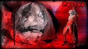 infernalrestraints-21-02-17-catherine-de-sade-posted-part-one.jpg